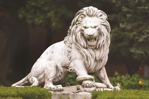 Marble big garden roaring lion statues in front of house